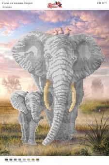 Вышивка бисером СВ 3077 Слоны  (частичная зашивка)