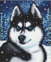 Набор Алмазной мозаики   АВ 4056 Хаски  полная зашивка