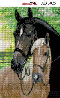 Набор Алмазной мозаики  АВ 3025 (полная зашивка)