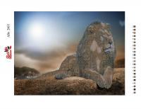 Набор Алмазной мозаики   АВч  2003 Лев  частичная зашивка