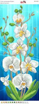 Вышивка бисером Пано ПМ 4010 Орхидея (частичная  зашивка)