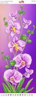 Вышивка бисером Пано ПМ 4054 Орхидея (частичная зашивка)