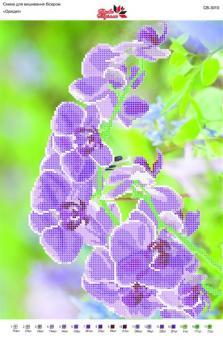 Вышивка бисером СВ 3010 Орхидея частичная вышивка